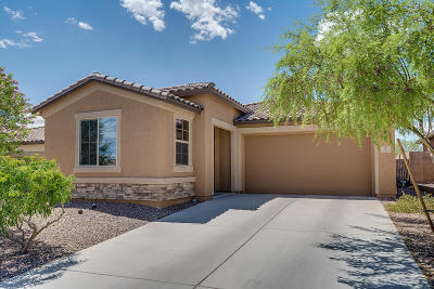 Marana Single Family Home For Sale: 12145 N Meditation Drive