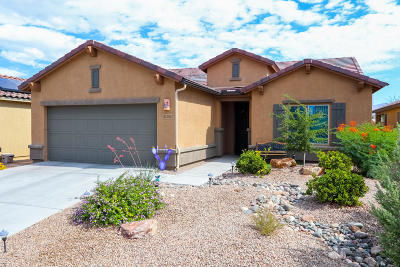 Vail Single Family Home For Sale: 10358 S Tea Wagon Way