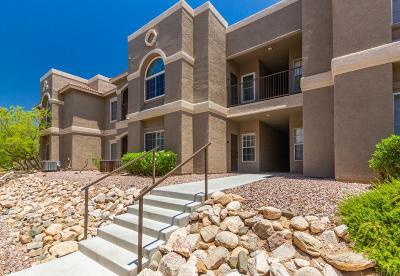 Tucson Condo For Sale: 1500 E Pusch Wilderness Drive #9102