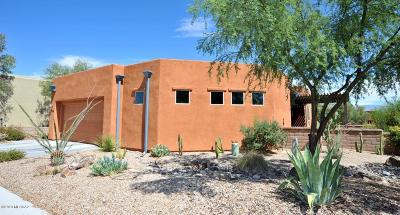 Tucson Single Family Home For Sale: 10559 E Marchetti Loop