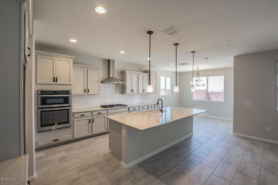 Marana Single Family Home For Sale: 14129 N Silverleaf Lane N