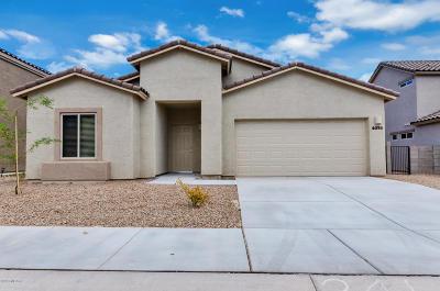 Tucson Single Family Home For Sale: 6394 E Boldin Drive
