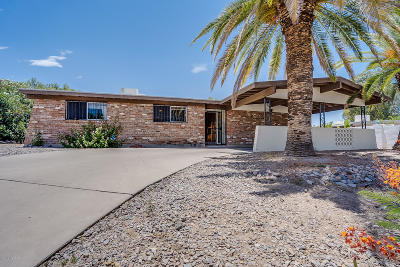 Tucson Single Family Home For Sale: 1742 S Camino Seco