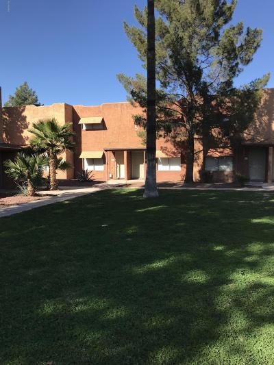 Tucson Condo For Sale: 2950 N Alvernon #9104