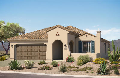 Marana Single Family Home For Sale: 7091 W Deer Creek Trail N