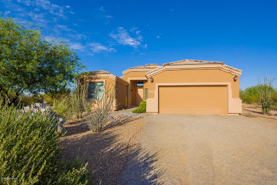 Marana Single Family Home For Sale: 10150 N Tall Cotton Drive