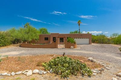 Tucson Single Family Home For Sale: 444 E Catalina Shadows Boulevard