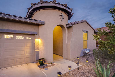 Sahuarita Single Family Home For Sale: 1387 E Stronghold Canyon Lane