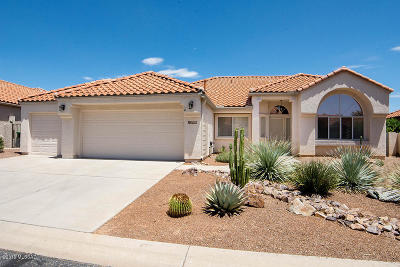 Single Family Home Active Contingent: 10790 N Eagle Eye Place