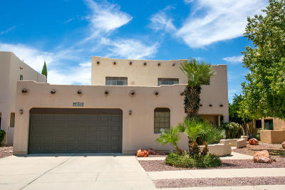 Pima County Single Family Home For Sale: 3421 W Overton Heights Drive