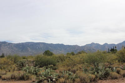 Catalina Residential Lots & Land For Sale: 15415 N Twin Lakes Drive