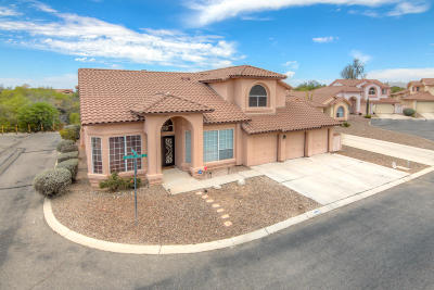 Tucson Single Family Home For Sale: 9831 N Canyon Brook Place