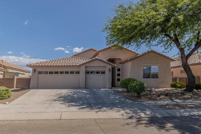 Tucson Single Family Home For Sale: 10594 E Black Willow Drive
