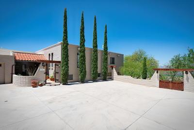 Rio Rico Single Family Home For Sale: 397 Camino Canoa