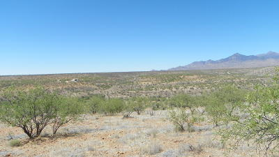 Rio Rico Residential Lots & Land For Sale: 361 Morsa Court #118