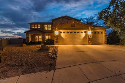 Tucson Single Family Home For Sale: 5464 W Lady Bug Court