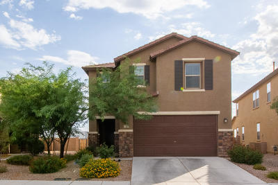 Tucson Single Family Home For Sale: 9518 S Desert Fauna Loop
