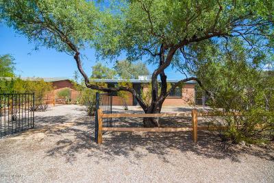 Tucson Single Family Home For Sale: 1521 E Spring Street