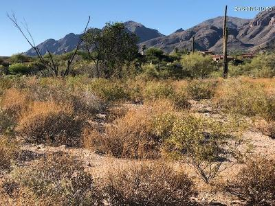 Tucson Residential Lots & Land For Sale: 5656 N Via Elena #320
