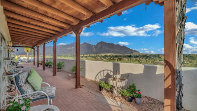 Oro Valley Single Family Home For Sale: 10475 N Pistachio Avenue