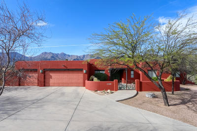 Tucson Single Family Home For Sale: 8501 E Solar Place