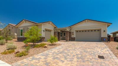 Marana Single Family Home Active Contingent: 7405 Cactus Flower Pass