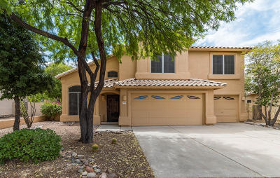 Pima County Single Family Home For Sale: 11380 N Canada Creek Drive