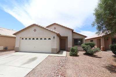 Tucson Single Family Home For Sale: 5091 N River Song Lane