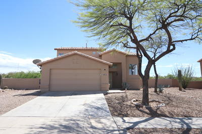 Single Family Home Active Contingent: 1097 S Desert Senna Loop