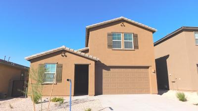 Vail Single Family Home For Sale: 10224 S Cienega Knolls Loop