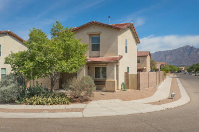 Tucson Single Family Home For Sale: 4277 E Deer Dancer Way