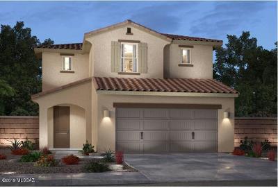 Pima County Single Family Home For Sale: 7497 S Via Rancho La Costa