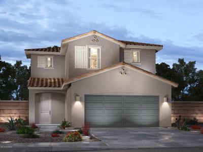 Pima County Single Family Home For Sale: 6866 E Via Arroyo Largo