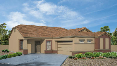 Marana Single Family Home For Sale: 9692 N Texas Ebony Lane