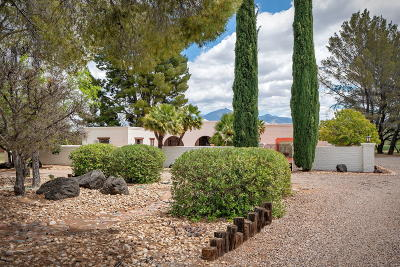 Tubac Single Family Home For Sale: 2289 Circulo De Anza