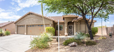 Marana Single Family Home For Sale: 12929 N Mesozoic Drive