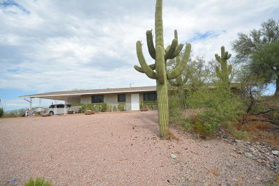 Tucson Single Family Home For Sale: 7350 N Wade Road