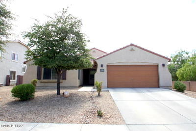 Marana Single Family Home For Sale: 12534 N Barbadense Drive