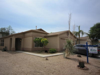 Tucson Single Family Home For Sale: 8117 S Sunny Horizon Place