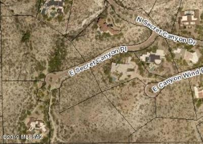 Tucson Residential Lots & Land For Sale: 3548 E Secret Canyon Place #60
