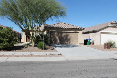 Sahuarita Single Family Home For Sale: 14572 S Camino Vendaval