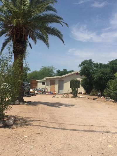 Tucson Single Family Home For Sale: 2841 N Castro Avenue