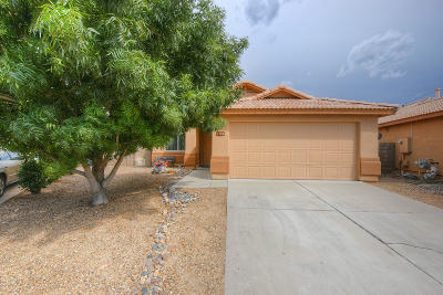 Tucson Single Family Home For Sale: 7701 S Precious Opal Drive