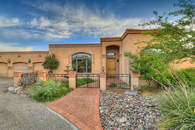 Tucson Single Family Home For Sale: 11411 E Andalusian Place
