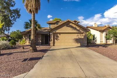 Tucson Single Family Home For Sale: 5210 W Aquamarine Street