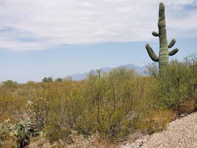 Tucson Residential Lots & Land For Sale: 3958 S Saguaro Monument Place #3