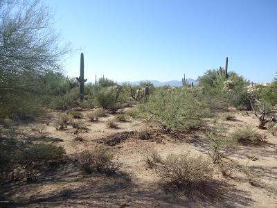 Tucson Residential Lots & Land For Sale: 11151 N Camino De Oeste