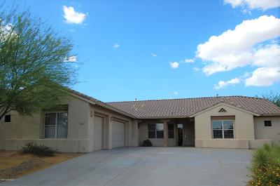 Tucson Single Family Home For Sale: 1667 S Sunlit Sand Place