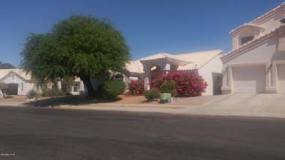 Pima County Single Family Home For Sale: 9089 N Eaglestone Loop
