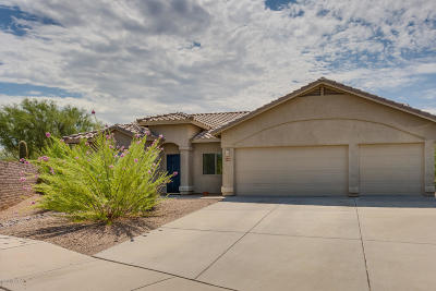 Tucson Single Family Home For Sale: 8106 N Iron Ridge Drive
